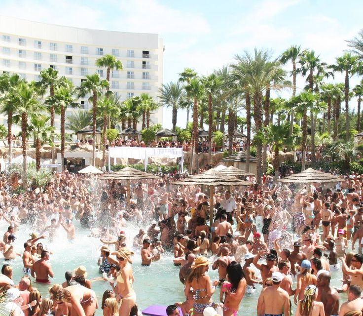 Las Vegas Pool Parties | Red Carpet VIP Las Vegas